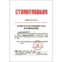 辽宁省科技型中小企业技术创新资金